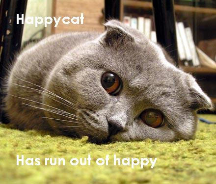 A grey Scottish Fold cat lies flat on their face on a green carpet.